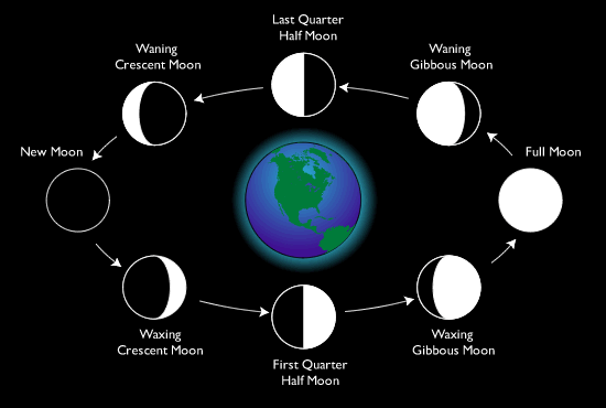 What is a Lunar Month?